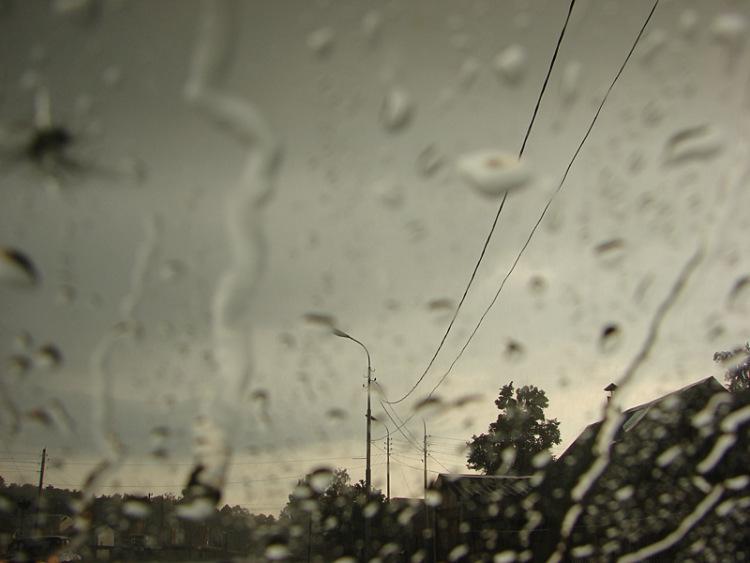 Но для ирландского художника фрэнсиса маккрори дождь является фриланс,творчество
